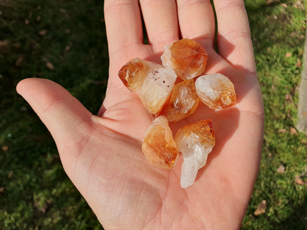 Citrine point 3cm - Earth's Treasures