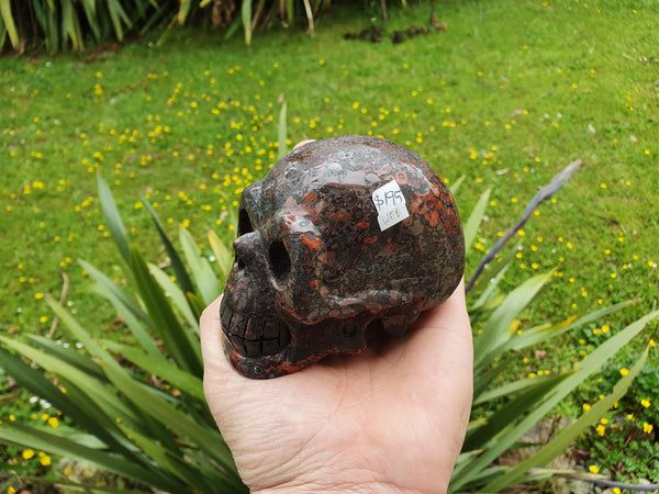 Brecciated Jasper Skull Large - Earth's Treasures