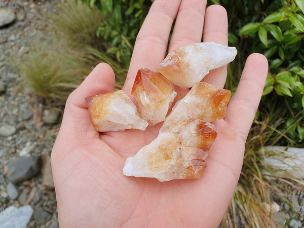Citrine point 4cm - Earth's Treasures