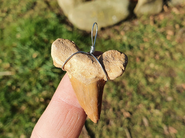 Otodus Shark Tooth Fossil Pendant Medium