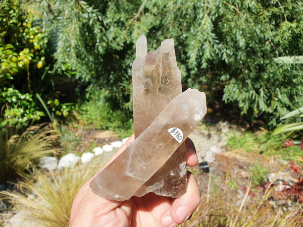 Smoky Quartz Cathedral Crystal