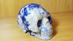 Sodalite Skull Large - Earth's Treasures