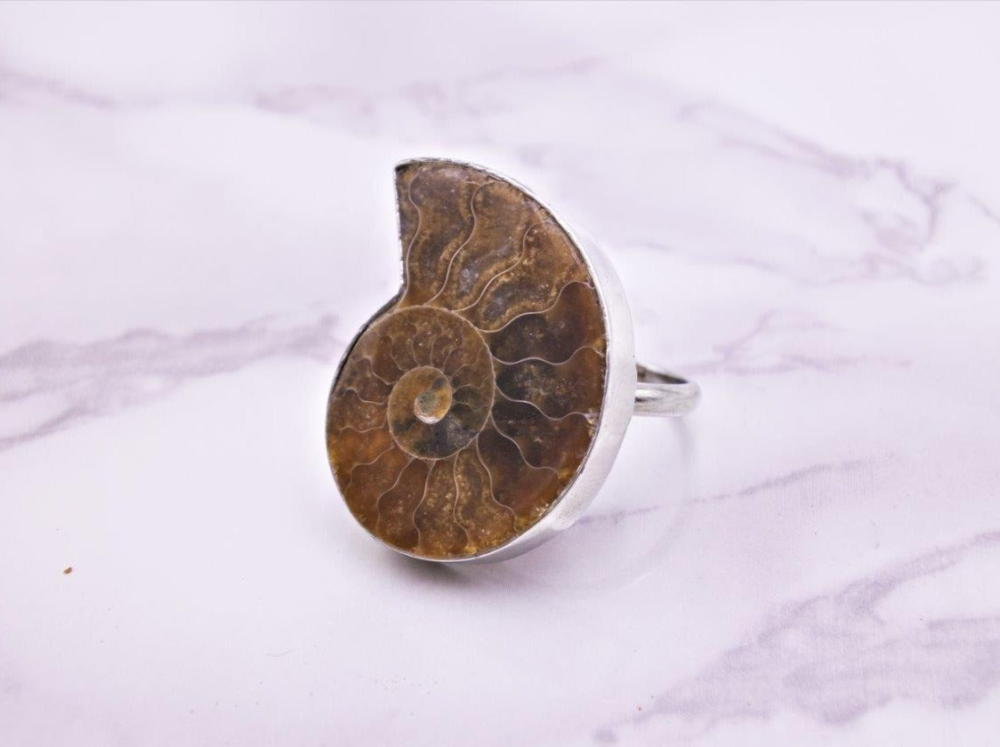 Ammonite Fossil Ring - Earth's Treasures