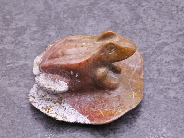 Jasper Frog on Lily - Earth's Treasures