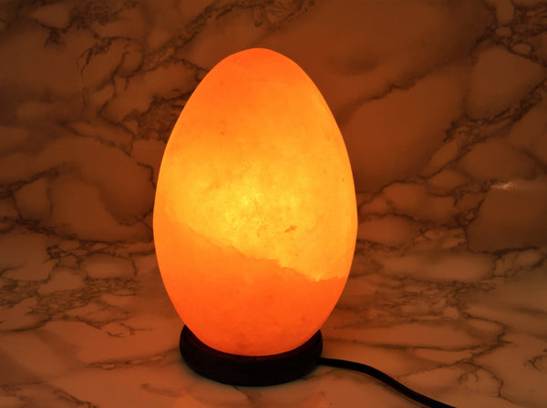 Himalayan Salt Lamp Egg - Earth's Treasures