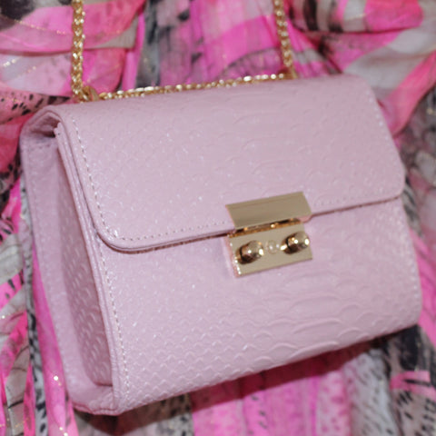 Pink Handbag by Danielle Lloyd