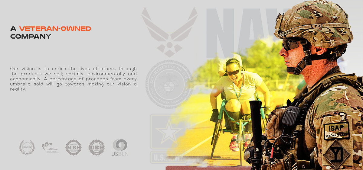 "Slider Image: An image of a soldier with the title ""A Veteran-Owned Company""."