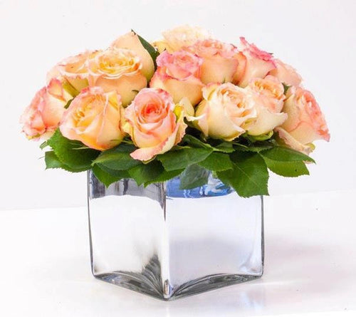 Light Pink Roses Squared