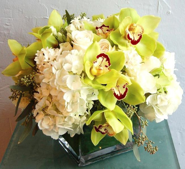 Orchids for the Desk