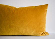 Velvet Pillow - Gold Lumbar