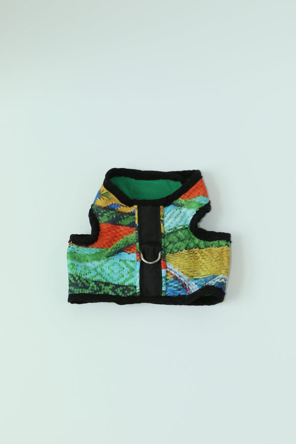 Molly Coogi Harness
