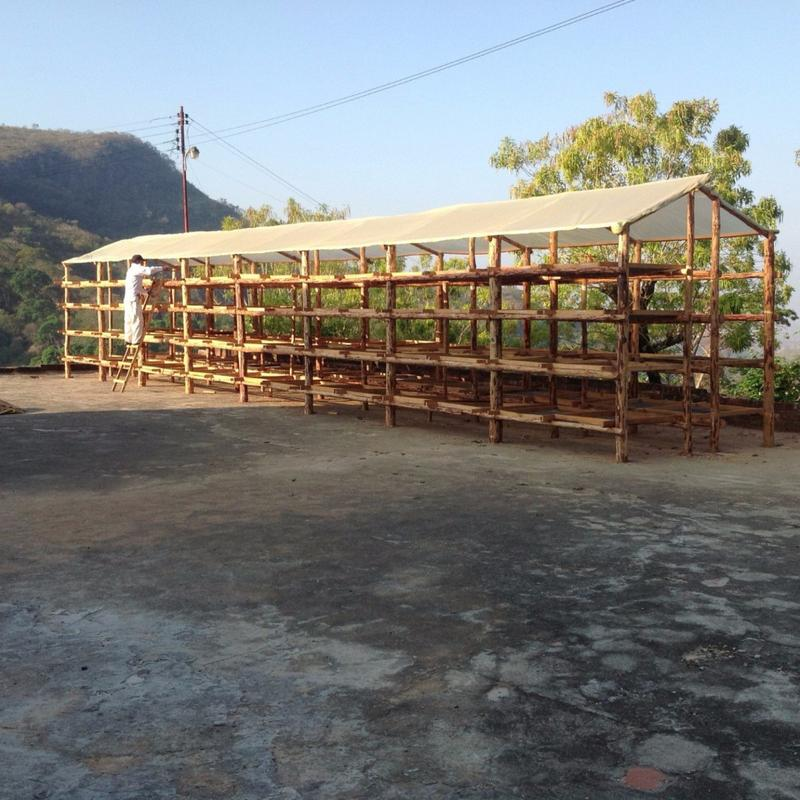 Covered drying beds for natural processed coffees located on Finca Calera in El Salvador