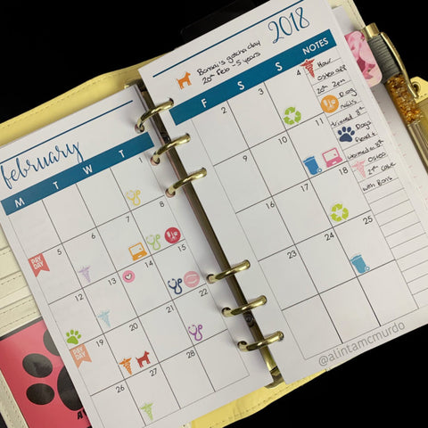 Spotlight on a Planner Alinta McMurdo May 2020