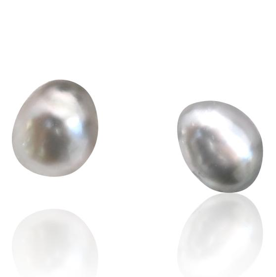 Tahitian Pearl Stud Earrings / #1
