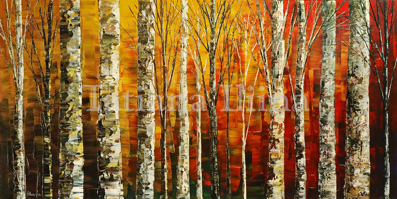 Birch Sunset