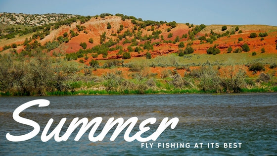 Fly Fishing and Summer Flows