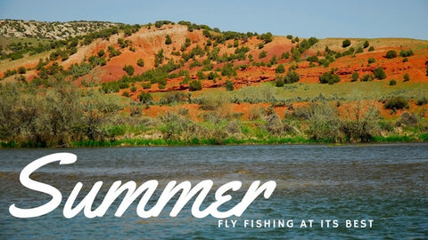 Summer Fly Fishing - The Best