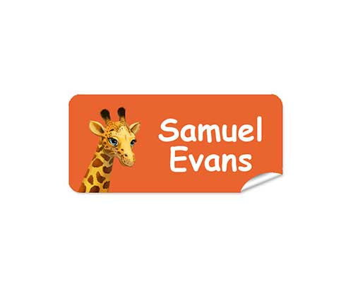 Giraffe Orange 42pk Labels - Rectangle