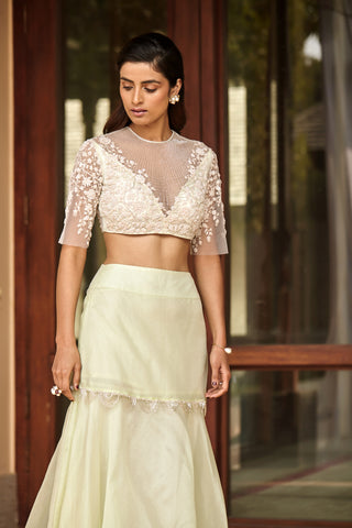 Embellished Blouse with Organza Skirt