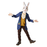 Book Week Mr. Rabbit Costume