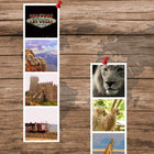 Classic Prints-Wall Photo Strip-3-