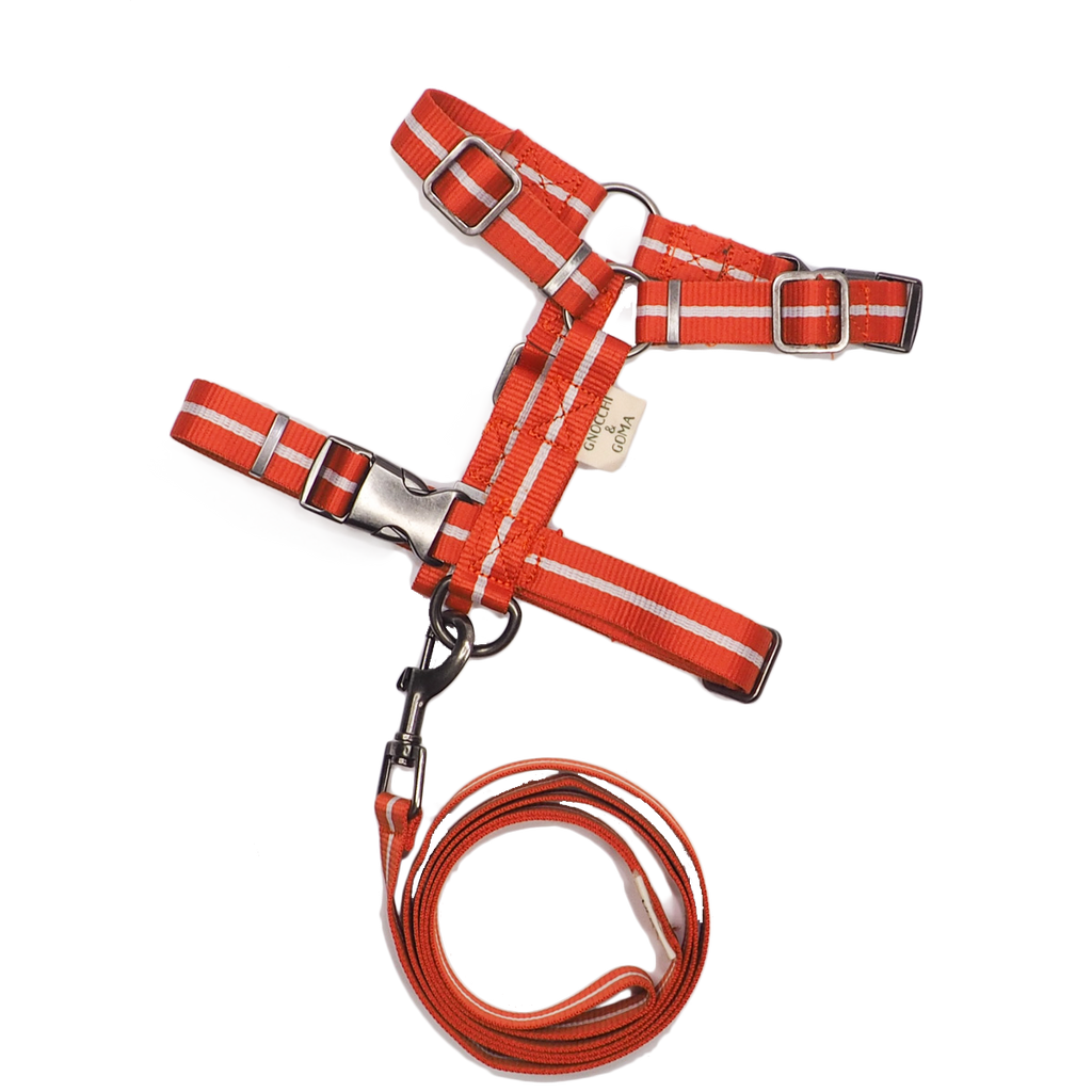 Duo Buckle Strap Harness Set - Orange/Cream