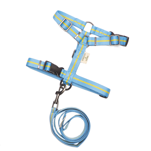Duo Buckle Strap Harness Set - Light Blue/Yellow