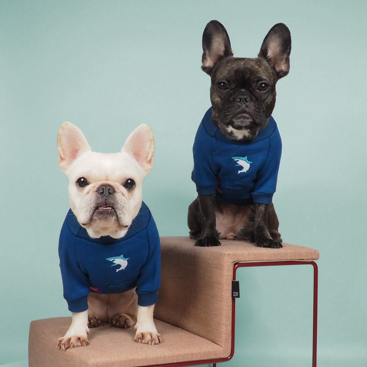 French Bulldog Clothes