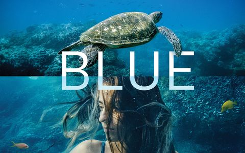 Blue The Movie