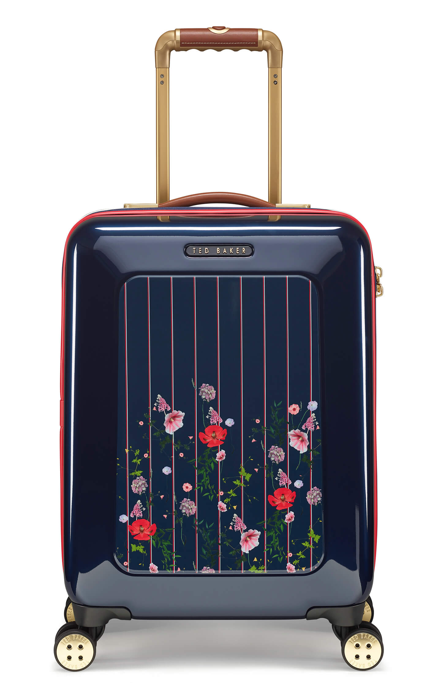 Ted Baker Take Flight Hedgerow 54cm 4-Wheel Cabin Case