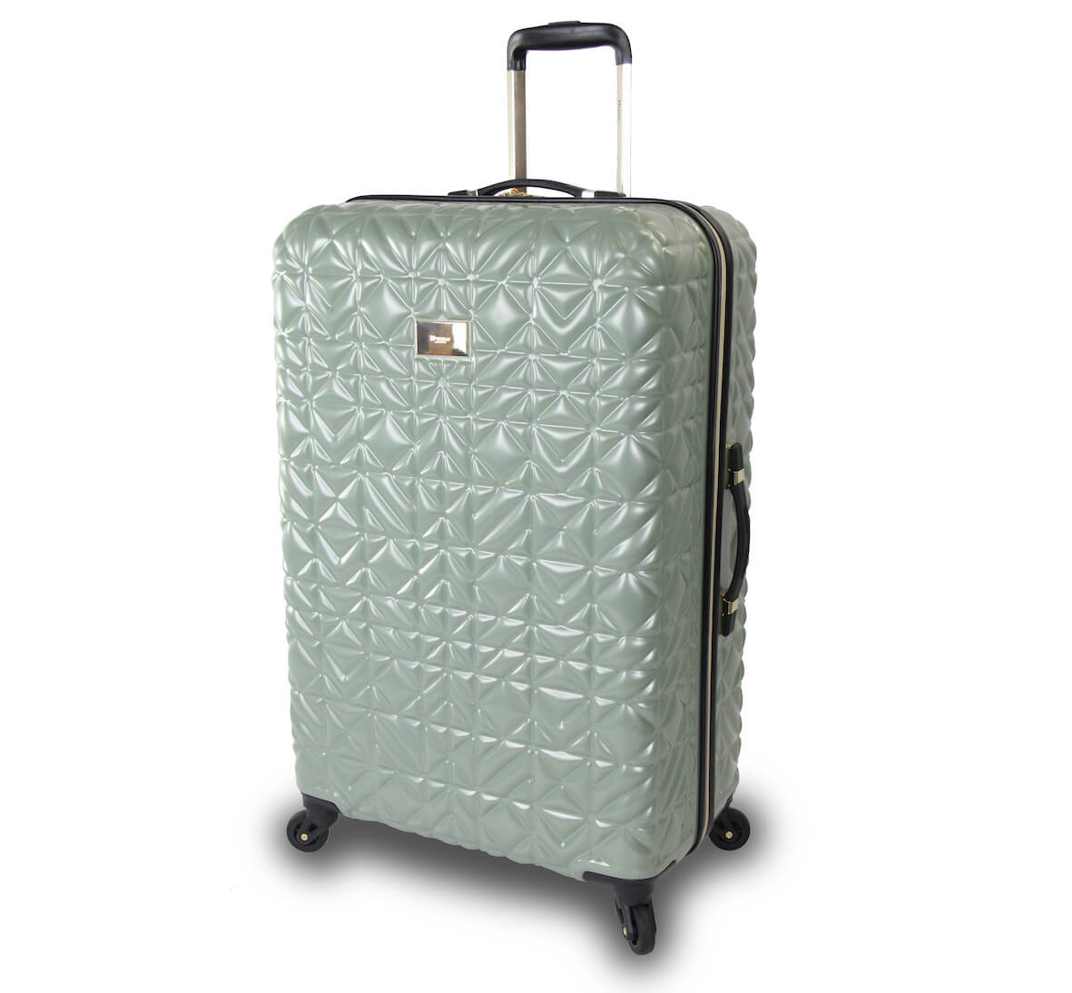 Dune London Tovangelina 77cm 4-Wheel Suitcase