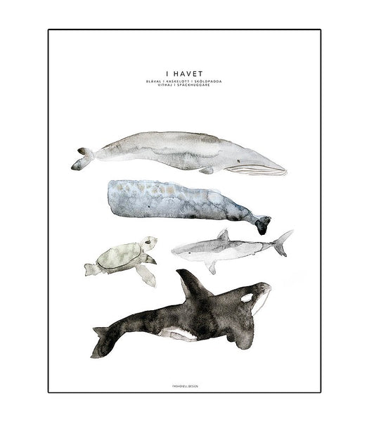 In the Ocean Poster Kids Room Nursery Decoration Fashionell House of Mint