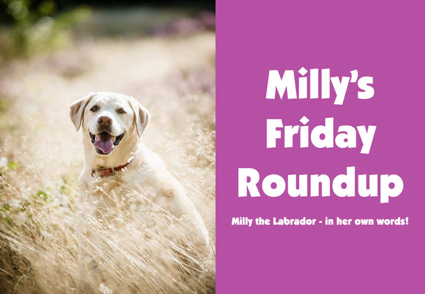 Milly's Friday Roundup