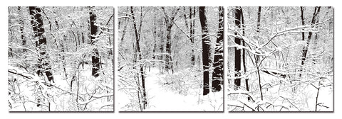 Baxton Studio Winter Woods Mounted Photography Print Triptych-Wall Decorations-HipModernHome