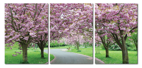 Baxton Studio Spring in Bloom Mounted Photography Print Triptych-Wall Decorations-HipModernHome