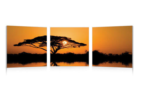 Baxton Studio Savannah Sunset Mounted Photography Print Triptych-Wall Decorations-HipModernHome