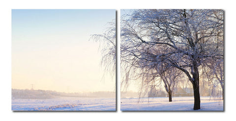 Baxton Studio Snowy Solitude Mounted Photography Print Diptych-Wall Decorations-HipModernHome