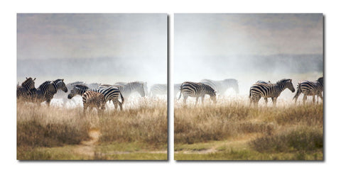 Baxton Studio A Zeal of Zebras Mounted Photography Print Diptych-Wall Decorations-HipModernHome