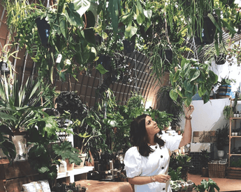 Cactus Inspiration:Natasha Sidhu's Essentials To Nature Inspired Decor