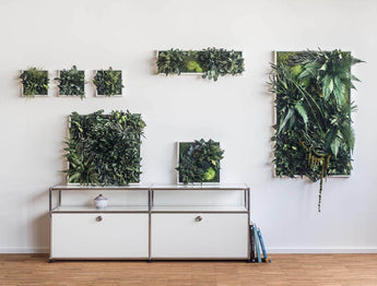Discover All About Plant and Moss Wall Art