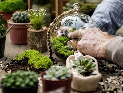 Get These Great Ideas for Terrariums and More!