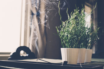Incense: An easy way to improve your indoor air