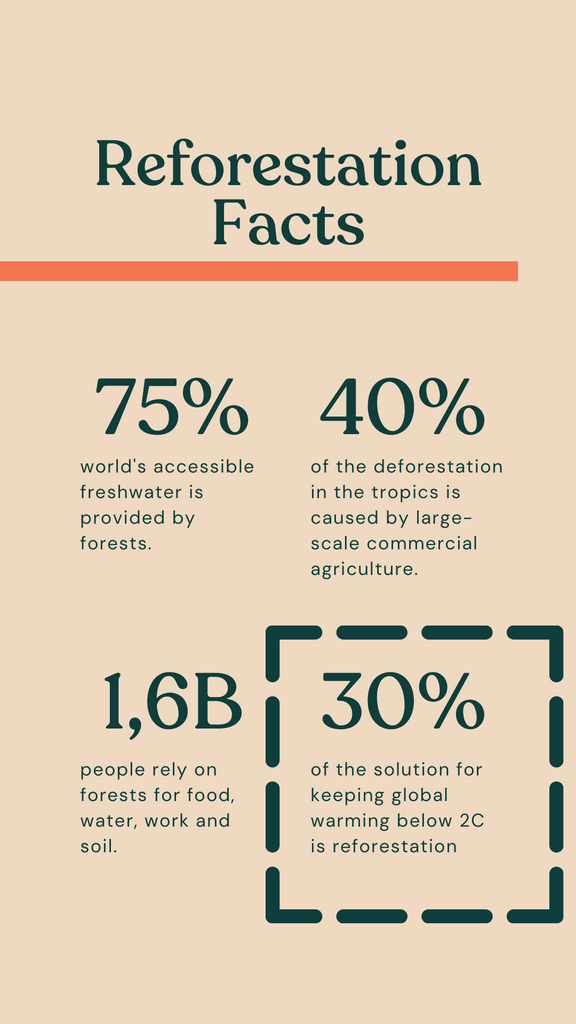 Reforestation Facts