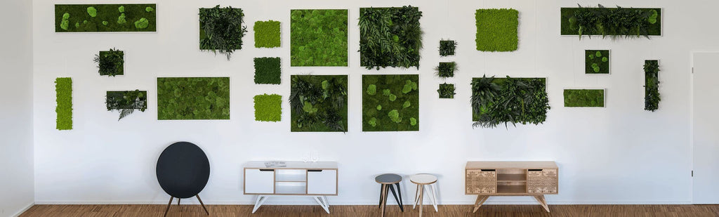 Plant wall art and moss wall art options in showroom