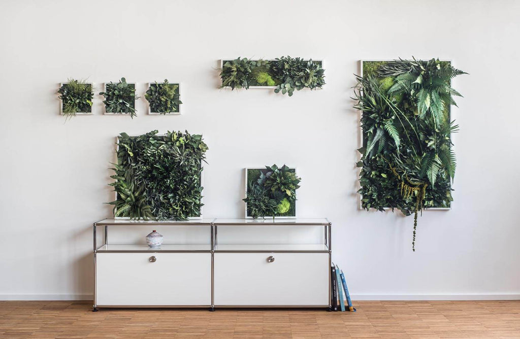 Beautiful Plant Wall Art: All You Need to Know about Plant Wall Art and Moss Wall Art