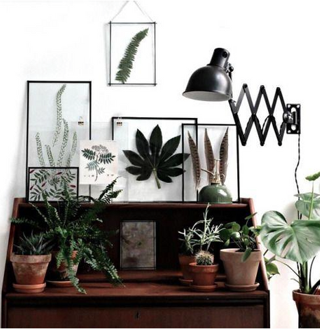Nature inspired walls styles - In glass