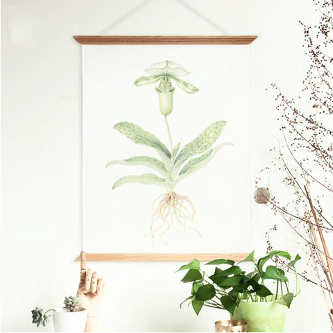 Nature inspired walls styles - Botany inspired