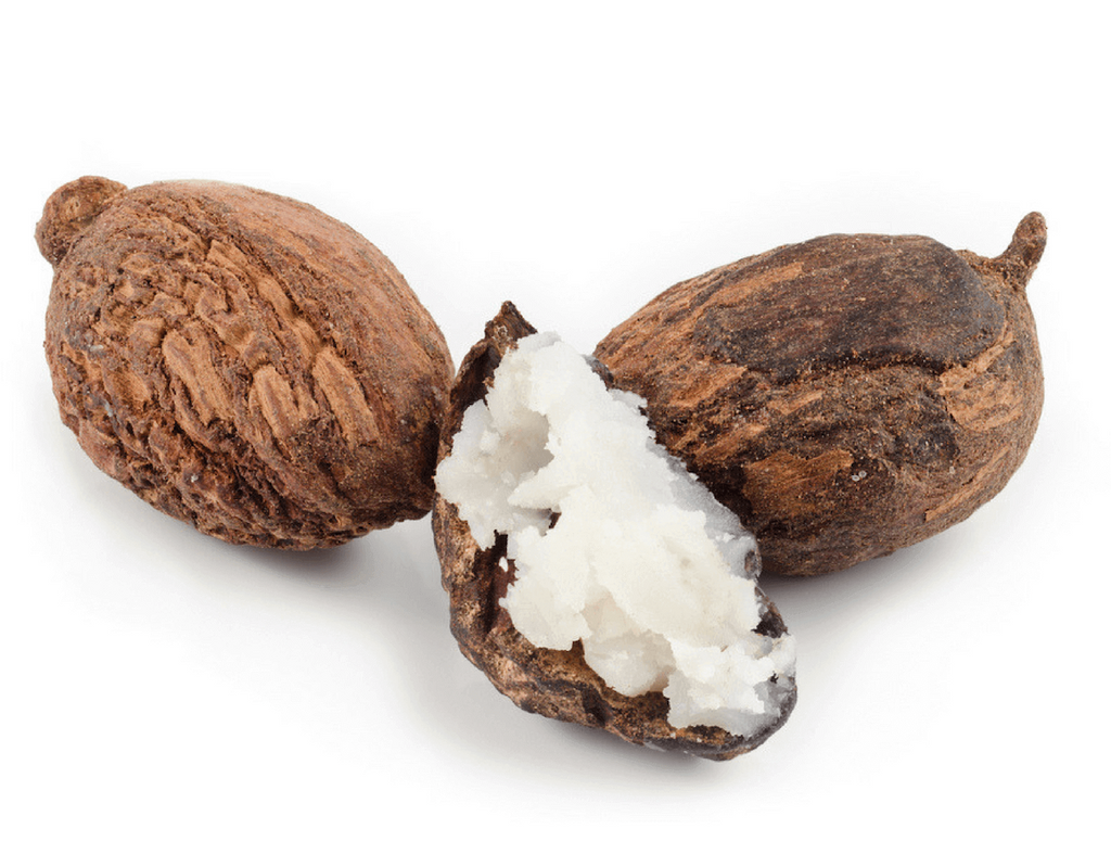 Shea Butter - Natural Ingredients for skin at Forest Homes