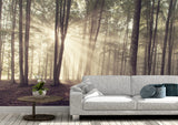 Nature inspired decor, Wall Decor, Forest Oho Mural Wallpaper (m²), Beautiful Natural Decor, Nature Designs, home decor, Forest Homes