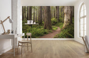 nature Wall Decor, Forest Trails Mural Wallpaper, beautiful natural decor, nature inspired designs, best home decor, Forest Homes